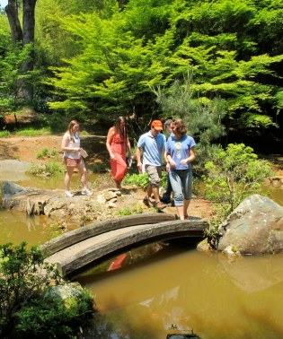 Exploring the Japanese Gardens at Morven