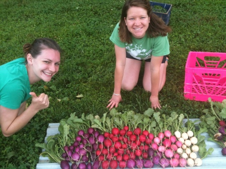 Two MKG leaders -- Rowan Sprague (right) and Isabel Greenberg (left) -- just finished with harvesting 101 radishes!